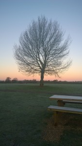 Ferry Meadows - Winter Sunrise